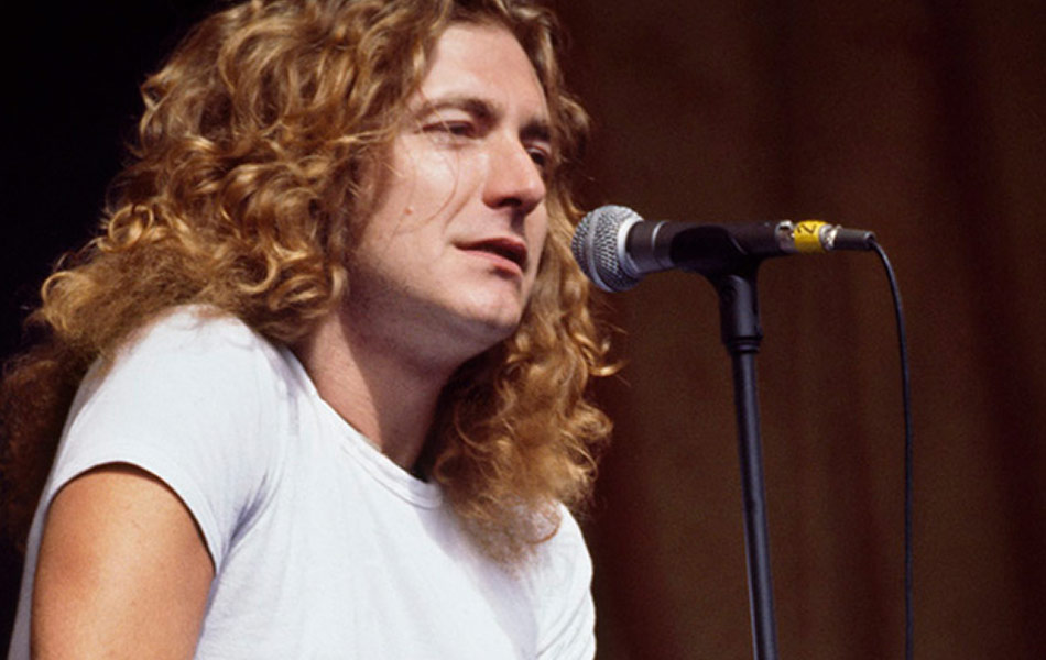 robert plant chartered accountant